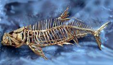 Fish Driftwood Sculptures & Art - Tony Fredriksson Open Sky Woodart in White River, Mpumalanga, Fish Gallery Sculptures by Tony Fredriksson Driftwood Sculpture, Driftwood Art, Sculpture Art, Sculptures, Driftwood Ideas, Fish Gallery, Wooden Art, Fish Art, Wall Colors