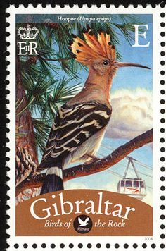 Eurasian Hoopoe stamps - mainly images - gallery format