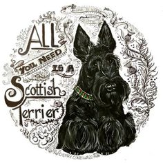 Scottish Terrier Collection : Tail End Productions Dog Art By Cherry ONeill Wheaten Terrier, Wire Fox Terrier, Rainbow Bridge, Westies, Little Dogs, Dog Art, Scottish Terriers, Scottie Dogs, Puppies