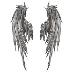 wings without background made by littlegreendevil1991 ❤ liked on Polyvore featuring wings, fillers, tattoos, drawings, lullabies y backgrounds