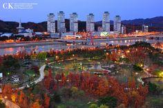 Hanbat arboretum, Daejeon Daejeon, South Korea, San Francisco Skyline, New York Skyline, Travel, Colors, Viajes, Korea, Trips