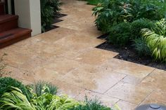 We liked that combination: Plants and Noce Travertine Pavers. What do you think? ⠀ .⠀ .⠀ .⠀ .⠀ .⠀ #travertine #paver #tile #poolcoping #bullnose #stairs #backyard #patio #pool #walkway #driveway #outdoor #indoor #sittingwall #poolcontractor #supplier #homeimprovement #sanjose #marble #porcelain #ledger #homeowner #yelp #hgtv #fixerupper #houzz #frenchpattern #naturalstone Backyard Patio, Backyard Ideas, Travertine Pavers, Pool Contractors, Paving Ideas, French Pattern, Pool Coping, Outdoor Tiles, Front Doors