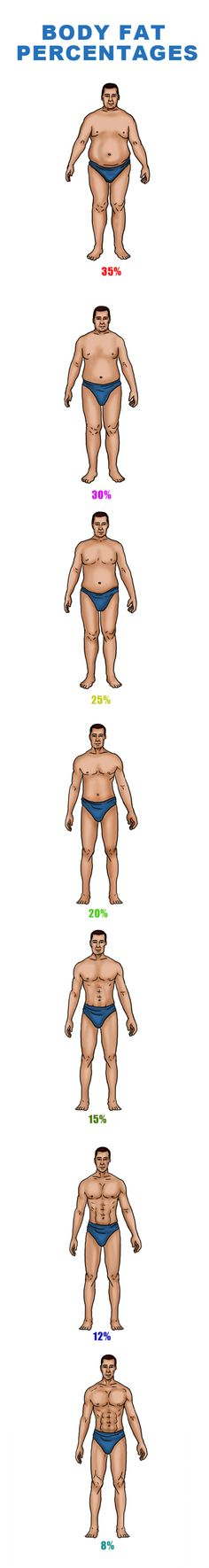 Body Fat Percentage Chart For Men. Ideal Weight Chart, Weight Charts, Body Fat Percentage Chart, Greek Gods, My Passion, Get In Shape, Bodybuilding, Gym, Vegan