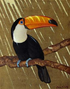 Toco Toucan All sizes Tropical Birds, Exotic Birds, Colorful Birds, Bird Drawings, Animal Drawings, Toco Toucan, Jungle Animals, Wildlife Art, Animal Paintings