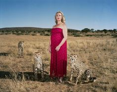 """Haunting Portraits Show Hunters At The Spots They Killed Their Trophies - **Trophies - what a word. I look at this & see a mother cheetah & 2 cubs. What was the reason for the kill? Was it a cull? Just for sport? Did she actually TRACK them or was she driven to them, then shot them from the safety of a Landrover? Which is essentially a canned hunt & there's nothing """"sporting"""" about that. If the hunter featured w/her """"trophies"""" is pregnant (she certainly looks it) then just wow. Oh, the…"""