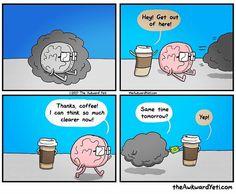 The Awkward Yeti Comic Strip for May 2017 Akward Yeti, The Awkward Yeti, Heart And Brain Comic, Coffee Cartoon, Funny Memes, Hilarious, Meme Gifs, Medical Humor, Science Humor