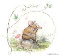 Marguerites Fountain - Petra Brown, Childrens Book Illustrator