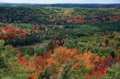Deadman's Hill near Petoskey dishes up spectacular autumn scenery.