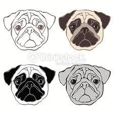 Resultado de imagem para desenhos de pugs