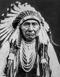 Native American Population, Native American Tribes, Native American History, American Indians, Native Americans, Native American Cherokee, Indiana, Chief Joseph, Native American Pictures