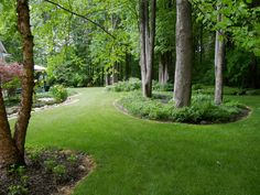 Backyard Landscape : a curious gardener Wish I could get my trees looking like this. - All For Garden Forest Garden, Woodland Garden, Lawn And Garden, Wooded Backyard Landscape, Large Backyard Landscaping, Landscaping Ideas, Acreage Landscaping, Wie Macht Man, Shade Garden