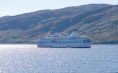 Visitor  25th August 2014  Ocean Majesty