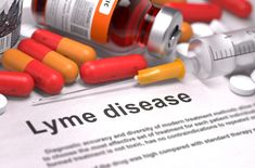 Researchers have discovered drugs with the potential to eliminate the Lyme disease-causing bacteria Borrelia burgdorferiat the onset of infection.