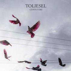 Toliesle - Contours EP