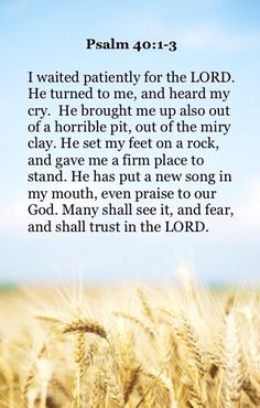 Lord, I remember with deep gratitude some of the slimy pits you lifted me from and those firm rocks you placed me upon. And that helps me to wait for you again now. Amen.
