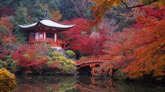 Religioso Daigo-ji  Bridge Water Reflection Tree Leaf Building Fall Lake Nature Pagoda Kyoto Fushimi-ki Japan Temple Papel de Parede