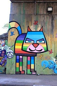 #colores #cat