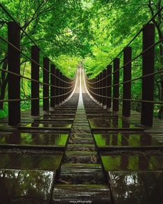 Japanese Modern, Japanese Landscape, Amazing Photography, Street Photography, Beautiful Places, Beautiful Pictures, Photo On Wood, Beautiful Landscapes, Lightroom Presets