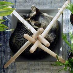 Your cat is probably super duper cute but wait until you see them in the Adventure Tent, a pawsome cat bed / cat hammock / cat tent in a modern design. Cat Teepee, Cat Tent, Cat Hammock, Animals And Pets, Cute Animals, Cat Kennel, Animal Gato, Adventure Cat, Cat Playground