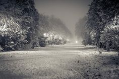 winter in Bucharest - photo from Bucuresti Optimist Bucharest, Beautiful Images, Country Roads, Snow, Winter, Outdoor, Winter Time, Outdoors, Outdoor Games