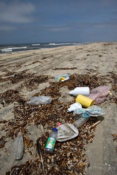 Plastic debris in the ocean outnumbers plankton by a ratio of 2 to 1. Marine Debris from Tijuana Mexico - Imperial Beach, CA. The plastic island in the pacific is twice the size of the USA.