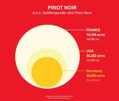 """German #Pinot Noirs are no """"yolk"""". Like this graphic!"""