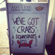Crabs! OUCH!