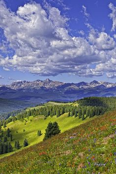 Mount of the Holy Cross from Shrine Ridge, Colorado by Fred J. Lord Colorado Hiking, Colorado Plateau, Vail Colorado, Colorado Mountains, Colorado Rockies, Rocky Mountains, Colorado Springs, Colorado Homes, Holy Cross
