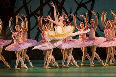 Melissa Hamilton as Queen of the Dryads and artists of The Royal Ballet in Don Quixote, The Royal Ballet © ROH/Johan Persson, 2013