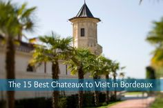 Bordeaux wine has been celebrated as the best wine in the world for hundreds of years. Leading the charge are the famous First Growths: Lafite, Latour, Mouton, Haut Br...