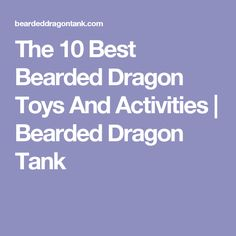 The 10 Best Bearded Dragon Toys And Activities   Bearded Dragon Tank