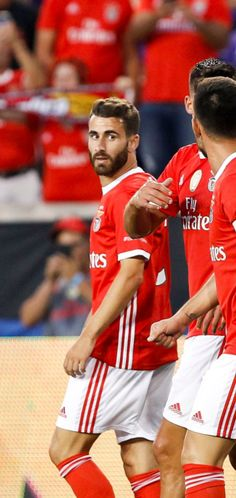 Benfica Wallpaper, Wall Collage, Sumo, Wrestling, Football, Wallpapers, Sports, Football Memes, Pictures