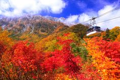 Scenic Spots for Toyama Toyama, Japanese Landscape, Alps, Scenery, Country Roads, Tours, Seasons, Mountains, Places