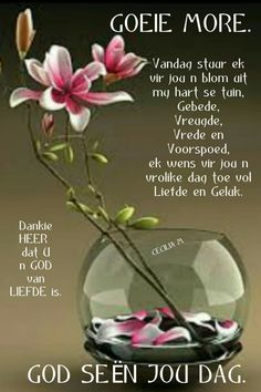 Morning Greetings Quotes, Good Morning Quotes, Lekker Dag, Happy Birthday Wishes Quotes, Evening Greetings, Afrikaanse Quotes, Goeie Nag, Angel Prayers, Goeie More