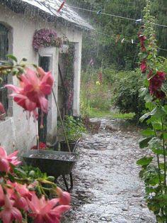 A summer thunderstorm ❤☔