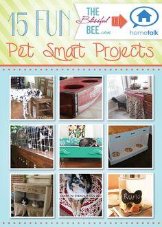 DIY  Crafts: 15 Fun Pet-Smart Projects! #diy #diydog #petsmart #diypet