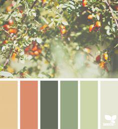 Fresh Hues | Design Seeds