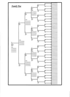 Family Tree Poster Chart WBlanks To FillIn Generation Per