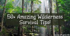 Are you prepared in case you find yourself stranded outdoors? These 50+ survival tips are extremely useful to know! [click to watch]