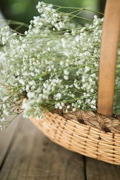 basket | delicate white flowers