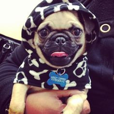 Weezy's outfitoftheday ! How could you not love this face?