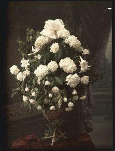Autochrome anonyme, circa 1910 - Antiq Photo - Photographies - [( 04. Autochromes supprimer_numero)] - Achat, vente et estimation gratuite d'appareils photos anciens, de photographies de collection et de daguerréotypes.