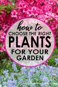 Flower Gardening Design These tips for choosing landscape plants are GREAT! They have awesome ideas for designing a low maintenance garden plan with perennials. Low Maintenance Landscaping, Low Maintenance Garden, Landscaping Plants, Landscaping Ideas, Landscaping Software, Landscaping Contractors, Farmhouse Landscaping, Hydrangea Landscaping, Driveway Landscaping