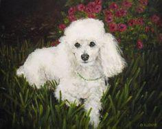 poodle portrait paintings - Google Search