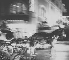 #Repost @ashley_collins_photography  Happy Kentucky Derby Day!  #canon #canonphotography #canonusa #canon6d #35mm #lightroom #blackandwhitephotography #blackandwhitephoto #monochrome #mule #carrige #equine #nola #neworleans #louisiana #longexposure #night #nightphotography #frenchquarter #bigeasy