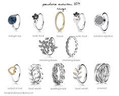 pandora autumn 2014 rings... I like the one in the far top right corner the best:) -notefromskeenz