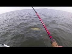рыбалка ловля большого судака на спиннинг с лодки видео онлайн