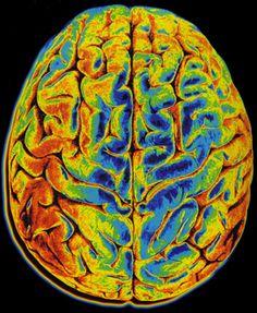 Læs om hvordan du kan bruge hjernetræning med neurofeedback til at få styr på tankerne.