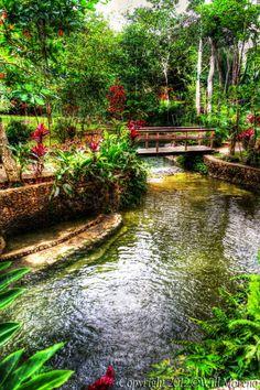 Finca Zazil Ha Family Farm in Belize...via Wil Moreno