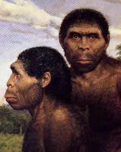 Homo erectus, 3e groep, 1ste rechtopstaande mens, maakte vuur